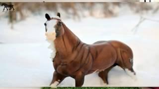 Обзор лошади бреер/breyer Big Chex to Cash (Биг Чекс ту Кэш)