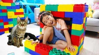 Boram et Chat Jouet coloré Jouent Dans Petite Maison à la maison