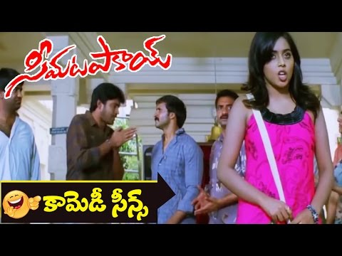 Poorna & Naresh's Family Members Comedy Scene || Seema Tapakai Movie || Allari Naresh, Poorna