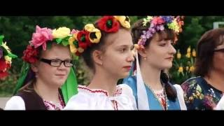 Вадим Южный - Васильки