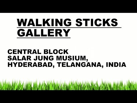 WALKING STICKS GALLERY (94 STILL PHOTOS), SALAR JUNG MUSEUM AS ON (05-06-2016) from YouTube · Duration:  4 minutes 55 seconds