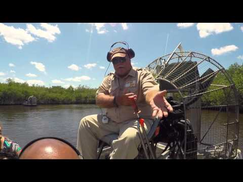 Captain Jack's Airboat Tour - Everglades City Florida With Alligator Sighting
