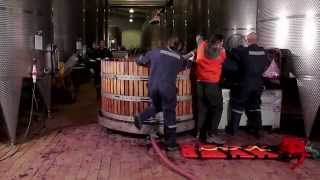 Prevención industria vitivinícola: Trabajo en cubas