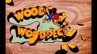 Приключения Вуди и его друзей (заставка)