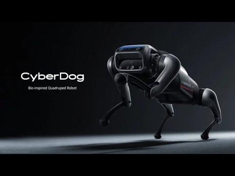 CyberDog from xiaomi.