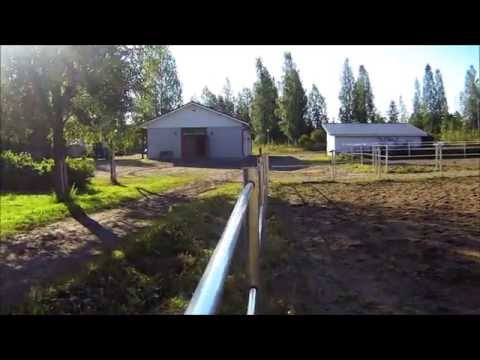 Horse fencing- Silber- Electric paddock fence 2015