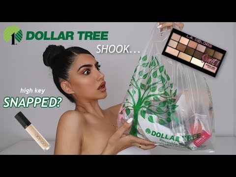 I TRIED DOLLAR TREE MAKEUP FOR THE FIRST TIME...IM SHOOK! thumbnail