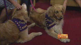 Southern Arizona Golden Retriever Rescue - Golden Gala Fundraising Event