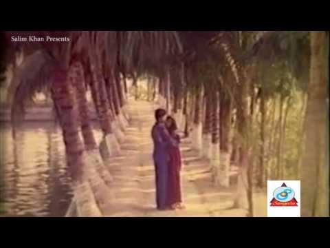 এতো দিন কোথায় ছিলে Bangla Movie Song/SHAKIB KHAN