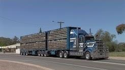 Australian Trucks: B-Doubles and Semi's
