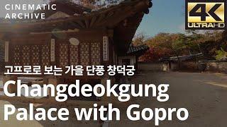 고프로로 보는 가을 단풍 창덕궁 / Changdeokg…