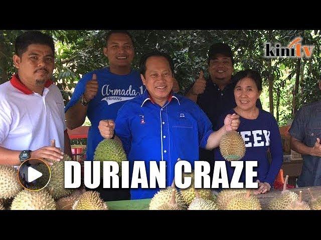 Ahmad Maslan: Durian is top search on Alibaba.com