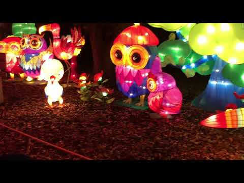 Ava running around! Chinese Lantern Festival (extra clips from iPhone 7 plus)
