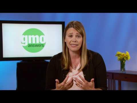 GMO Answers   The Hype Magazine