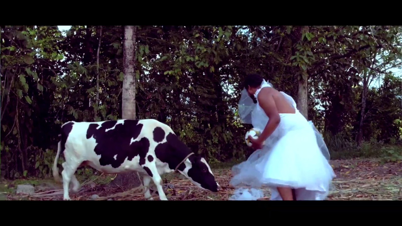 Download Trinidad Madman - Married [ Official Music Video ]