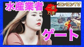 [韓国ニュース]一波万波、水産業者ゲート