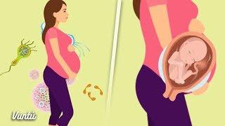 5 alimentos que NO debes comer si estás embarazada. Podrías matar a tu bebé