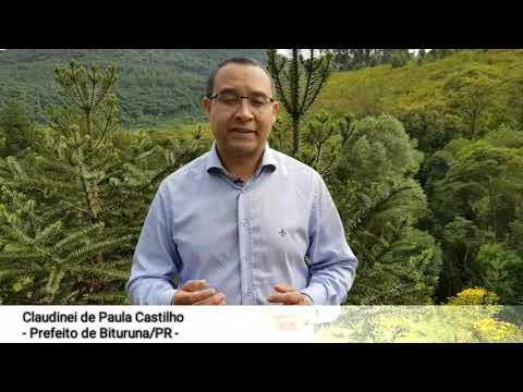 Araucária de pinhão precoce - Prêmio Gestor Público - Claudinei de Paula Castilho - Bituruna/PR
