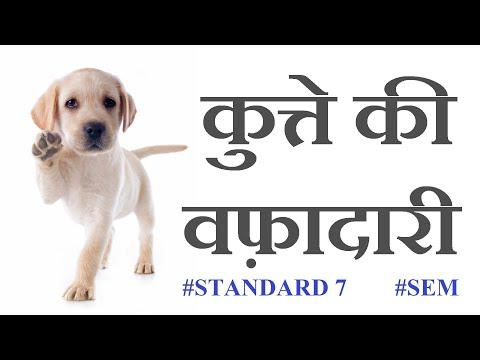 Hindi lesson std 7 kutte ki vaffadari