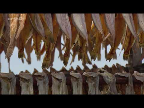 Peuples des confins: Le Groenland Documentaire (2014)