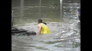 Sucuri ataca Jovem que pescava em RONDÔNIA.