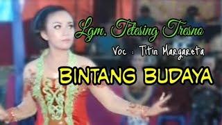 Campursari BINTANG BUDAYA // Tetesing Tresno - voc. Titin Margareta // Selo Community Production
