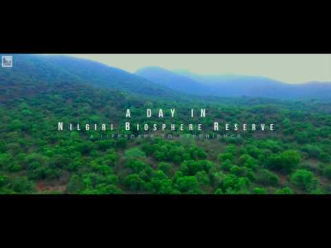 A Day In NBR_Teaser (Nature Documentary)   Full HD 1080p   By_Terin_Jomics_L