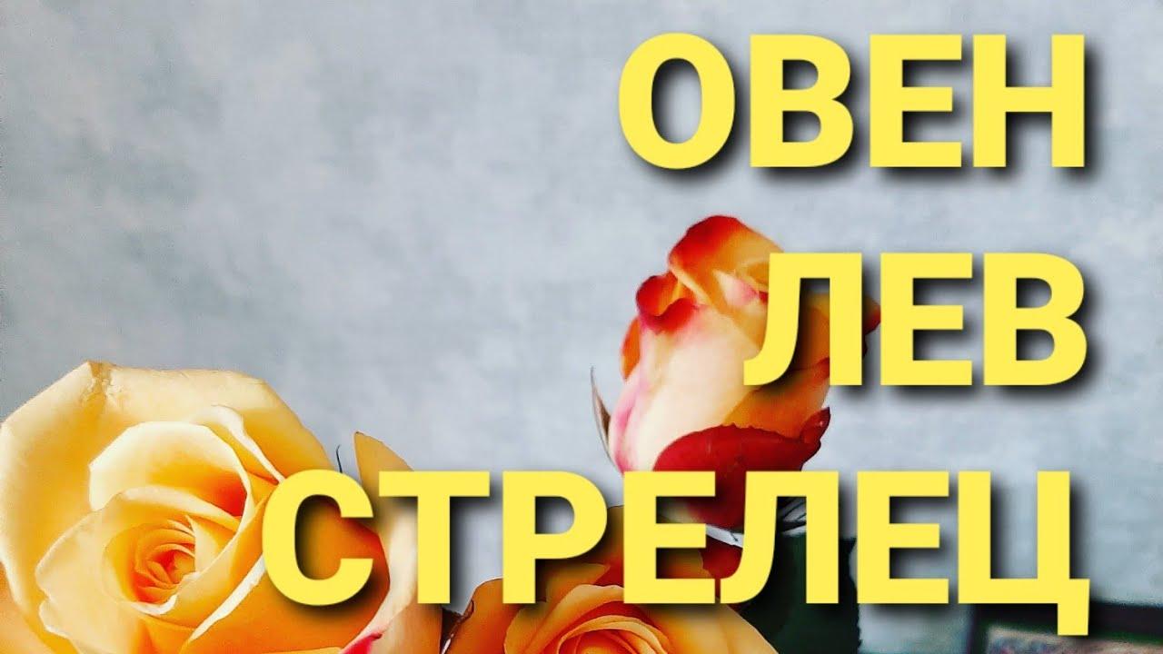 ГОРОСКОП/💚💚💚💚💚💚💚💚МАРТ/ОВЕН🧡🧡🧡🧡🧡🧡💚💚💚💙💙💙💯🤍🤍🤍🤍/ЛЕВ/СТРЕЛЕЦ🥰🥰🥰🥰🥰ГАДАНИЕ НА КОФЕЙНОЙ ГУЩЕ!!