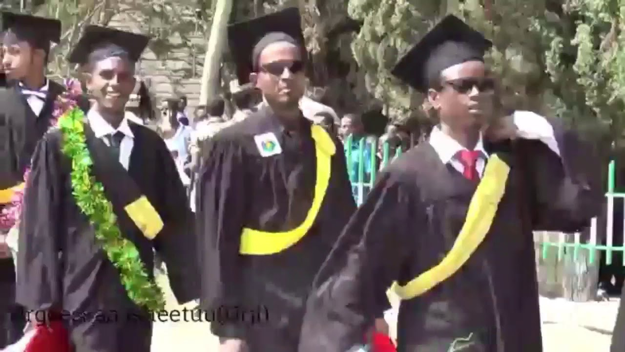 Download Urgeessaa isheetu new  oromo music baga gamadan Ebifama..