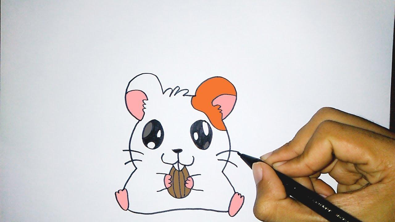 Cara Menggambar Hewan Lucu Hamster How To Draw A Cute Hamster Youtube
