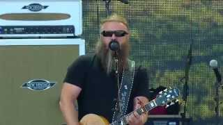 Jamey Johnson -  In Color (Live at Farm Aid 30)