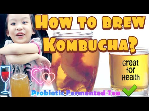 step-by-step-guide-how-to-brew-kombucha-at-home-|-probiotic-fermented-tea-drink-great-for-health