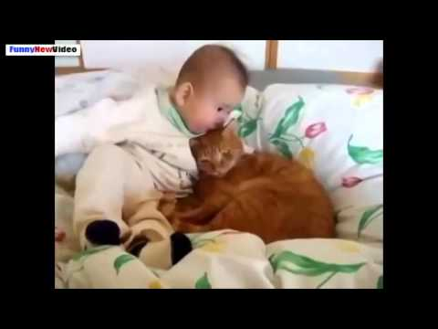 Funny Videos Of Cats And Babies Compilation 2015   Video Dailymotion