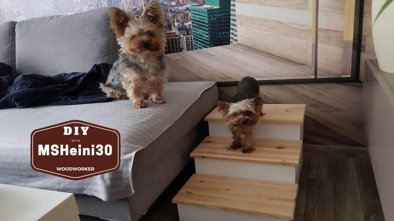 hunde treppe