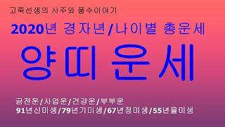 2020년 경자년 양띠운세/새해운세/신년운세/토정비결