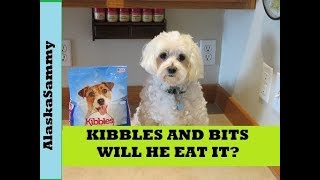 Kibbles and Bits Dog Food Review Mini Bits