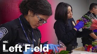 Colombia's Cash Crop:  Flowers for Valentine's Day   NBC Left Field