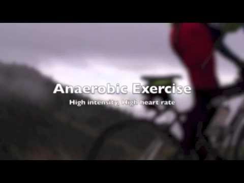 Type 1 Diabetes Exercise