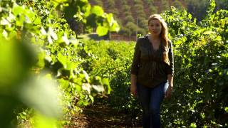 Willamette Valley: Escape to Oregon Wine Country for a Romantic USA Vacation
