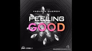 VAGUS & Querox  - Feeling Good (Original Mix)
