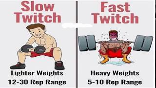 Science of Muscle Growth Part 1 with English subs