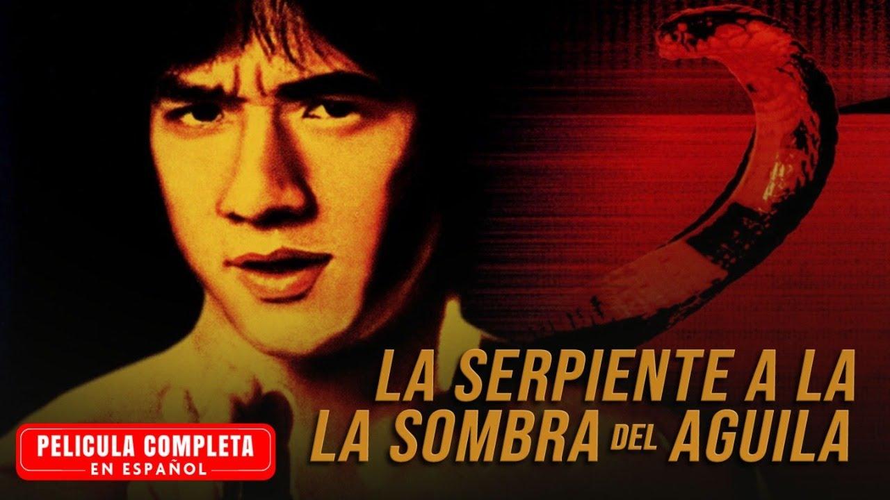 Download La Serpiente a La Sombra del Aguila - Jackie Chan - Pelicula Completa En Espanol