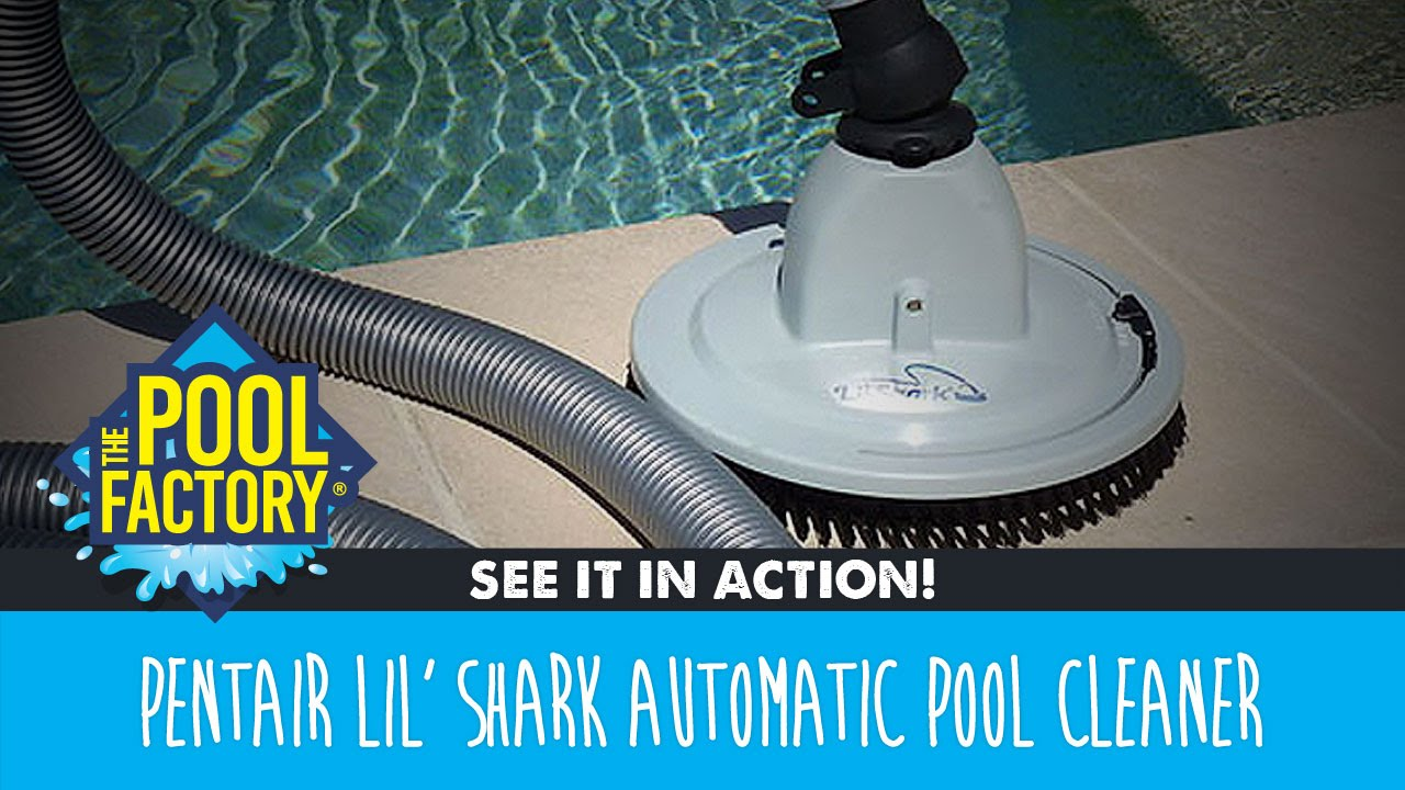 Pentair Lil' Shark Pool Cleaner - SEE IT IN ACTION!