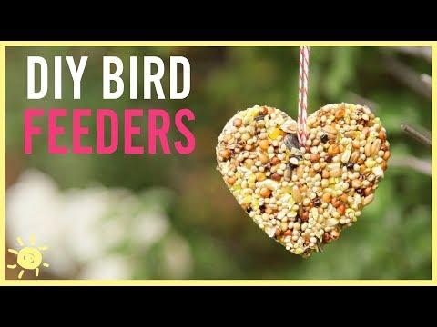 DIY   How to Make a Bird Feeder (Easy Kids Craft!)