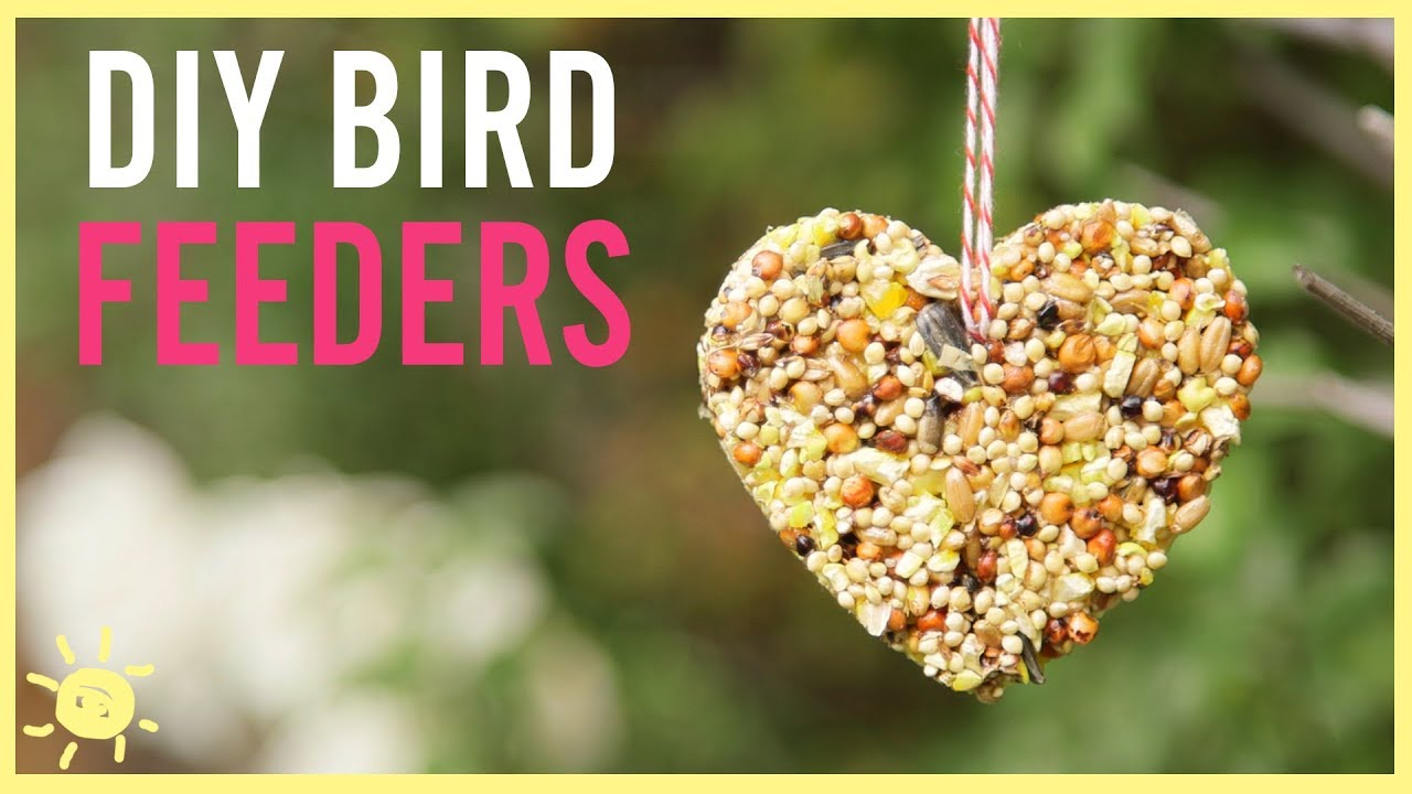diy how to make a bird feeder easy kids craft youtube