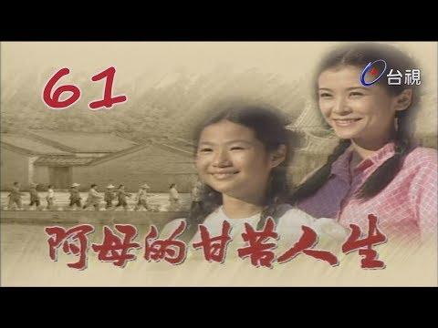 阿母的甘苦人生 第 61 集