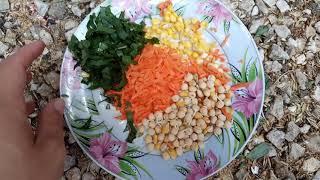 Летние витамины для попугаев,мои попугаи в летнем вольере.
