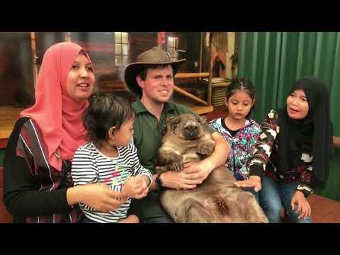 Perth Vacation Day 3 Caversham Wildlife Park   DJI Osmo Mobile