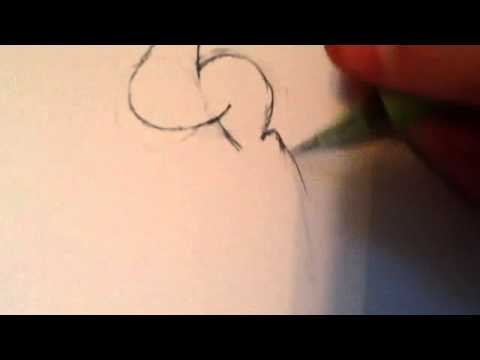 how to draw a my little pony pt 1 the base youtube