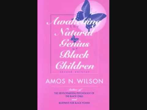 Amos N  Wilson   Awakening the Natural Genius of Black Children